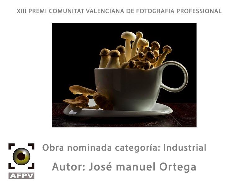 Dia decisivo para la entrega de nominaciones a los premios Comunidad Valenciana.